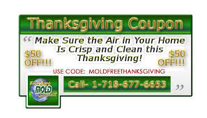 thanksgiving coupons archives five boro mold
