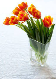How To Arrange Flowers In A Tall Vase 7 Tips For Happy Tulips Whole Foods Market