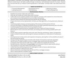 Real Free Resume Templates Ceo Resume Sample Real Estate Resume Real Estate Resume Example