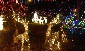 christmas light park near me china road christmas park home facebook