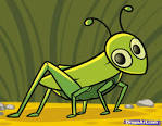 How To Draw A Bgrasshopper B For Kids Step By Step Animals For Kids B B