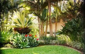 Tropical Plants For Garden - fresh garden with tropical plants wearefound home design