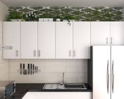 top of kitchen cabinet greenery 17 creative above kitchen cabinet decor ideas roomdsign