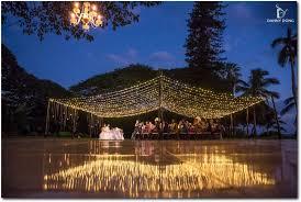 outdoor wedding lighting wedding lighting spotlight on our twinkle light canopy