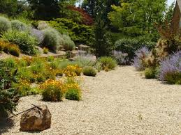 27 best dry creek bed gardens images on pinterest dry creek bed