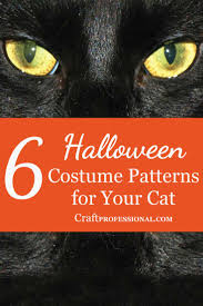 Black Cat Halloween Craft by Easy Craft Ideas