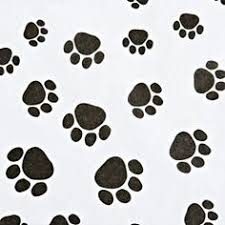 paw print tissue paper paw print tissue paper shreds idea packaging