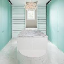 french frosted glass closet doors design ideas