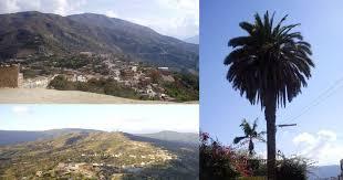 imagenes de sud yungas turismo sud yungas bolivia home facebook