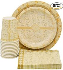 passover paper plates paper plates for passover 25 paper seder plates pesach