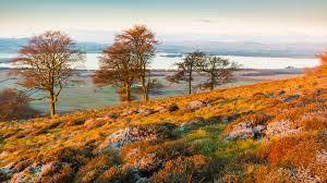 1920x1080 fall wallpaper download wallpaper 1920x1080 mountains hills grass autumn full