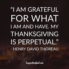 30 thanksgiving quotes to add to your family celebration