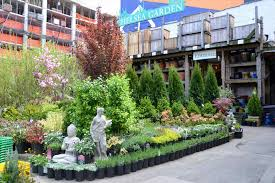 Urban Gardener Newport Beach Gardening Centers Near Me Home Outdoor Decoration