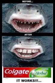 Braces Off Meme - so i got my braces off and i feel awesome me pinterest