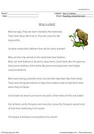 primaryleap co uk reading comprehension what is a bird non