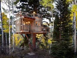 Climb on up This amazing tree house was made for adults  Trending