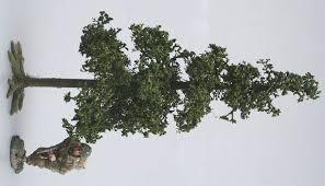 005 small fir tree