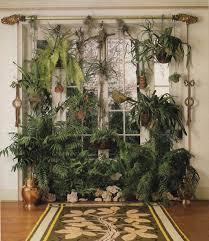70 u0027s plants forsam plants pinterest plants houseplants and