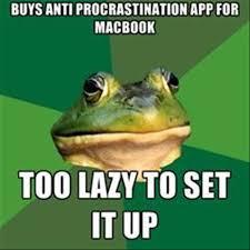 Bachelor Frog Meme - the best of bachelor frog meme 28 pics