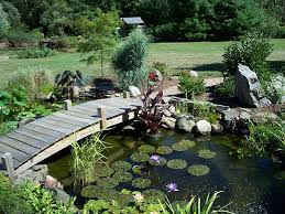 Backyard Pond Landscaping Ideas Koi Pond Backyard Ideas Landscaping Gardening Ideas