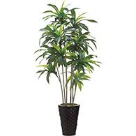 silk trees indoor artificial silk trees trees for indoors