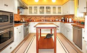 Cost Of New Kitchen Cabinet Doors Gripping Picture Of Amazing Like Isoh As Of Amazing Like Ganapatio