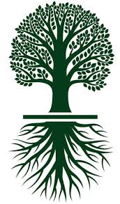 trade a tree united electric co op inc