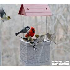 Backyard Wild Birds Wild Bird Feeder By Infinity Feeders For Patio Backyard Home