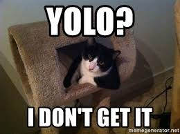 Cool Cat Meme - yolo i don t get it cool cat meme generator