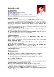 resume format with work experience example resume format work