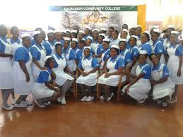 nursing council of jamaica u2013 regulating jamaica u0027s nurses and midwives