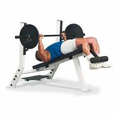 Bench Press For Biceps - the big fat effective exercise list lean it up