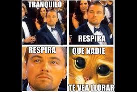 Leonardo Dicaprio No Oscar Meme - los oscar 2016 en memes grupo milenio