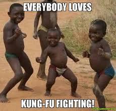 Fighting Meme - everybody loves kung fu fighting make a meme