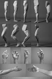 Human Anatomy Reference Http Anatomicalart Com Post 114778391554 Artist Refs Via