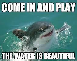 Shark Week Meme - funny shark pictures bdfjade