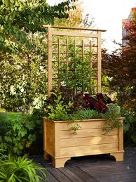 planter box and trellis garden ideas pinterest planters