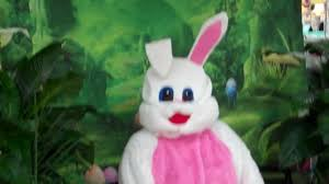 the easter bunny at walmart by catdog youtube