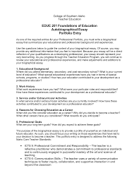college professer resume samples descriptive essay day beach free