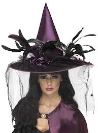 amazon com smiffy u0027s women u0027s witch hat with feathers and netting