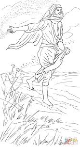parable of the sower coloring page free printable coloring pages