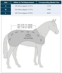 veredus magnetik blanket smartpak equine