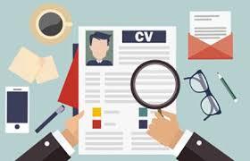 cv search write a great cv page personnel