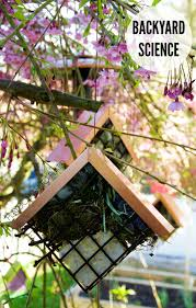 how to make bird u0027s nest helpers playdough to plato