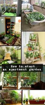 how to start an apartment garden tips tricks naturalgardenideas com garden in small spacetable