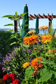 The Urban Garden Vancouver 18 Best Pike Place Urban Garden Images On Pinterest Pike Place