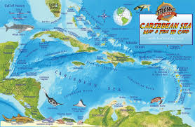 Map Curacao Amazon In Buy Caribbean Sea Map U0026 Reef Creatures Guide Franko