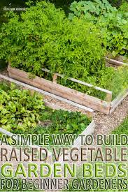 pictures how to build a vegetable garden free home designs photos