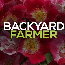 backyardfarmer youtube
