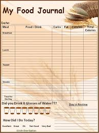 for description about this template see food journal template